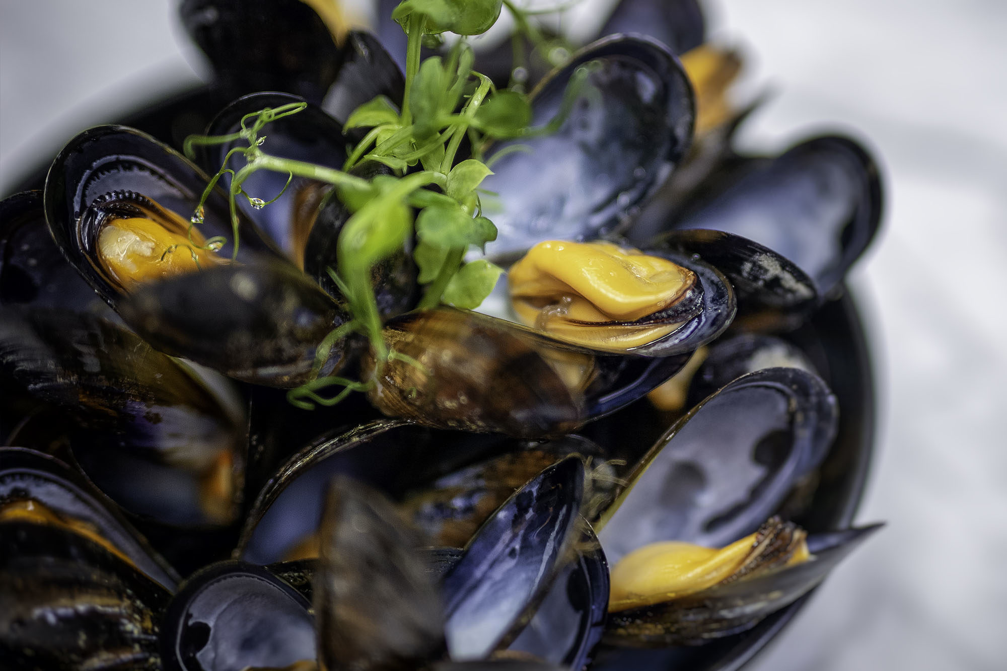 Steamed Mussels - Hero